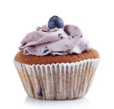 Blueberry cupcake Stock Images