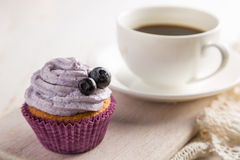 Blueberry cupcake on white wood background Royalty Free Stock Photo