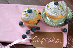 Blueberry cupcake Stock Photography