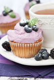 Blueberry cupcakes Royalty Free Stock Photos