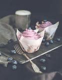 Blueberry Cupcakes with fresh Blueberries Stock Images