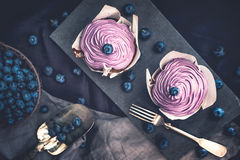 Blueberry Cupcakes with fresh Blueberries Royalty Free Stock Photo