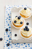 Blueberry cupcakes. Cupcakes with vanilla buttercream swirl and blueberries Royalty Free Stock Images