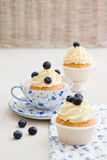 Blueberry cupcakes. Cupcakes with vanilla buttercream swirl and blueberries Royalty Free Stock Photography