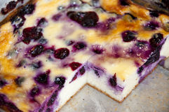 Blueberry or currant berry cheesecake Stock Photos