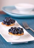 Blueberry Custard Tart Royalty Free Stock Photos