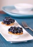 Blueberry Custard Tart Royalty Free Stock Photos