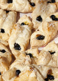 Blueberry Danish Pastry. Close-up of many blueberry danish pastry, breakfest sweet roll Stock Images