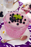 Blueberry dessert Royalty Free Stock Images