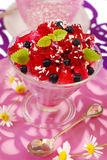 Blueberry dessert with jelly Stock Photography