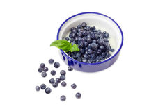 Blueberry dessert with sweetened condensed milk. Dessert made of the fresh blueberries and sweetened condensed milk in blue bowl decorated with basil twig and Stock Photo