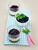 Blueberry dessert Royalty Free Stock Photo