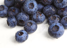 Blueberry detail  background Royalty Free Stock Photos