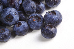 Blueberry detail  background Stock Photography