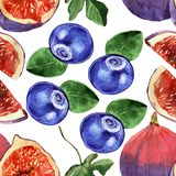 Blueberry and fig  seamless pattern on white background . Watercolor. Watercolor Blueberry and fig  seamless pattern isolated on white background . ripe Royalty Free Stock Images