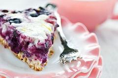 Blueberry Flan. With focus on front of pie to show texture of the pie. Shallow DOF Royalty Free Stock Photography