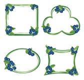 Blueberry frame set  isolated on white background. Royalty Free Stock Images