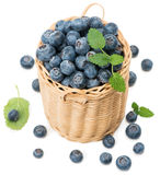Blueberry Royalty Free Stock Image