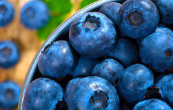 Blueberry. Fresh blueberries in a metal bucket Stock Photos