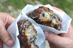 Blueberry Fritters Stock Images