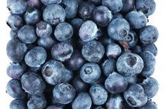 Blueberry fruit. Group isolated on white background Royalty Free Stock Photos