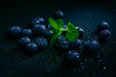 Blueberry. Fruit on stone background. Healthy forest fruit. Delicious fresh berries Stock Photos