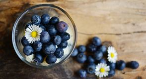 Blueberry, Fruit, Superfood, Berry Royalty Free Stock Photos