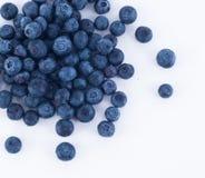 Blueberry Fruit Stock Image