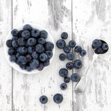 Blueberry Fruit Royalty Free Stock Photo