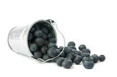 Blueberry Fruits Royalty Free Stock Photography