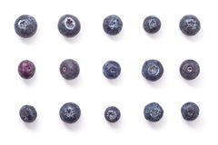 Blueberry fruits formation. Group of blueberry fruits arranged in formation viewed from above, studio Stock Photos