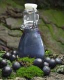 Blueberry fruits fresh juice royalty free stock photos