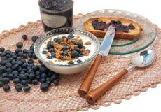 Blueberry galore Stock Image