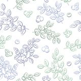 Blueberry graphic color seamless pattern sketch illustration vector. Blueberry graphic color seamless pattern sketch illustration Royalty Free Stock Images