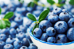 Blueberry or great bilberry in bowl with green leaves. Organic superfood and healthy nutrition. Stock Photos