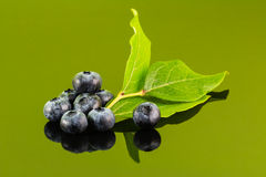 Blueberry on green background with leaf Stock Photography