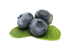 Blueberry with green leaves () Royalty Free Stock Photo