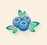 Blueberry and green leaves. Background with blueberry, green leaves and long shadows stock illustration
