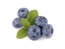 Blueberry and green leaves Stock Photography