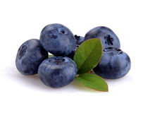 Blueberry and green leaves Stock Image