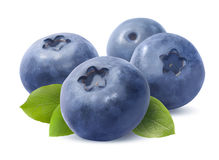 Blueberry group  on white background Royalty Free Stock Photography