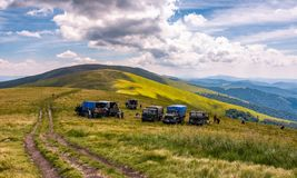 Blueberry harvesting in Carpathian mountains. Pylypets, Ukraine - July 23, 2016: blueberry harvesting in Carpathian mountains. location Gymba mountain of Stock Photography