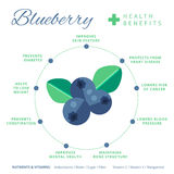 Blueberry health benefits and nutrition infographics. Superfood. Vaccinium berry nutrients and vitamins information. Healthy detox natural product info. Flat vector illustration