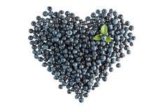 Blueberry heart shape Stock Photos