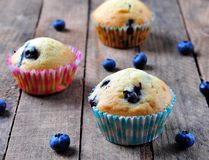 Blueberry homemade cupcakes on a wooden background, rustic style Stock Photos