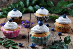 Blueberry homemade cupcakes on a wooden background, rustic style Royalty Free Stock Photo
