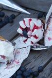 Blueberry ice cream Stock Photo