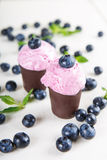Blueberry ice cream or frozen yogurt and sprig of mint, with fre Stock Images