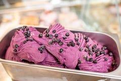 Blueberry ice cream Stock Photos