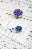 Blueberry ice cream on pewter cup Royalty Free Stock Photos